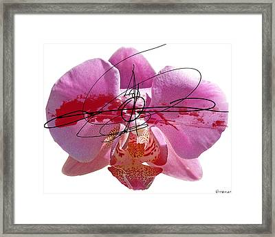 Pink Cowboy Hat 2 Framed Print by Geronimo