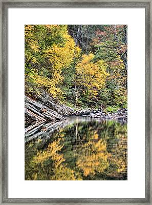 Reflections Of Natural Color Framed Print by JC Findley