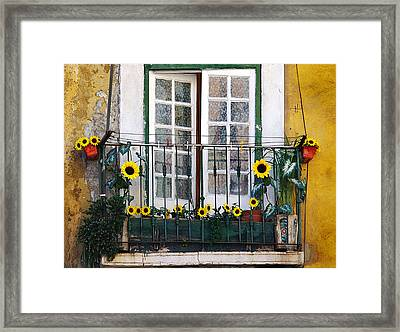 Sunflower Balcony Framed Print by Carlos Caetano