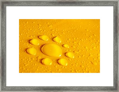 Water Flower Framed Print by Carlos Caetano