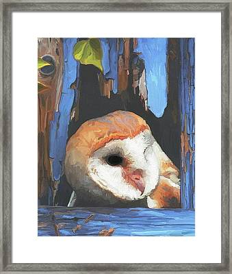 Who Are You Framed Print by Patti Siehien