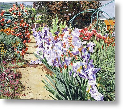 Monet's Garden Walk Metal Print by David Lloyd Glover