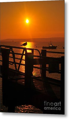Plymouth Harbor Sunrise Metal Print by Catherine Reusch  Daley
