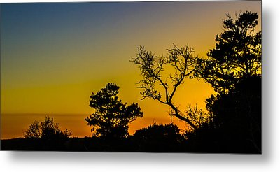 Sunset Silhouette Metal Print by Debra and Dave Vanderlaan