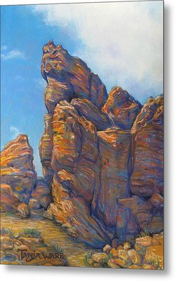Valley Of Fire Metal Print by Tanja Ware