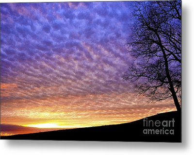 Sunrise Drama Metal Print by Thomas R Fletcher