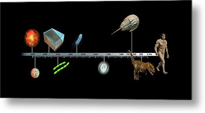 Evolution Of Earth Timeline Metal Print by Mikkel Juul Jensen