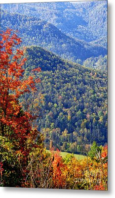 Point Mountain Overlook Metal Print by Thomas R Fletcher