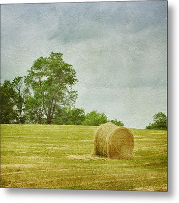 A Day At The Farm Metal Print by Kim Hojnacki