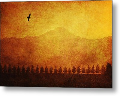 A Row Of Trees And A Raven Silhouetted Metal Print by Roberta Murray
