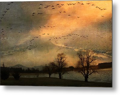 And They Flew Away Metal Print by Kathy Jennings
