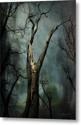 Appeal To The Sky Metal Print by Cynthia Lassiter
