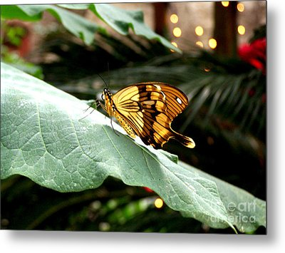Beautiful Blessings Metal Print by Kathy  White