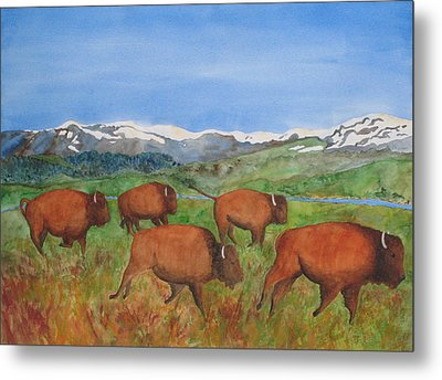 Bison At Yellowstone Metal Print by Patricia Beebe
