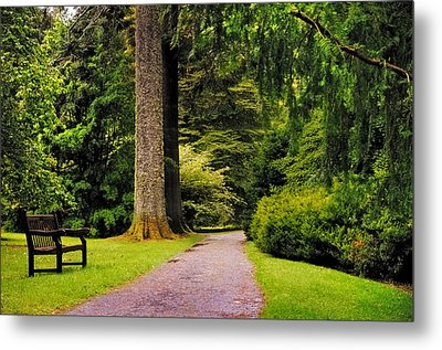 Come Sit With Me. Benmore Botanical Garden. Scotland Metal Print by Jenny Rainbow