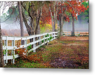 Coosaw Horse Fence Metal Print by Scott Hansen