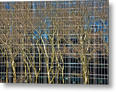 Culture And Nature Metal Print by Joanna Madloch