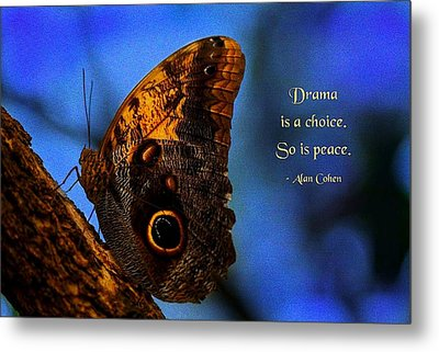 Drama Is A Choice Metal Print by Mike Flynn