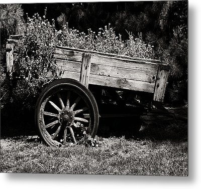 Floral Cart Metal Print by Camille Lopez
