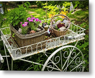 Flower Cart In Garden Metal Print by Elena Elisseeva
