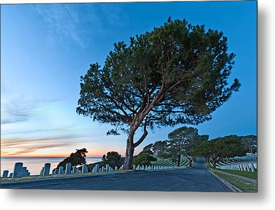 Fort Rosecrans National Cemetery Metal Print by Alexis Birkill