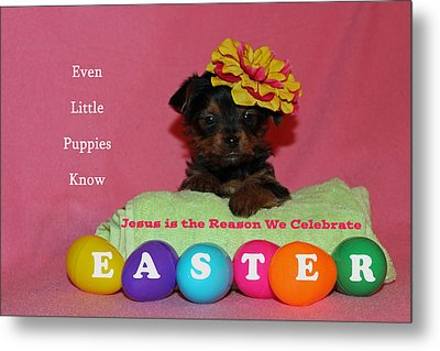 Happy Easter Metal Print by Lorna Rogers Photography