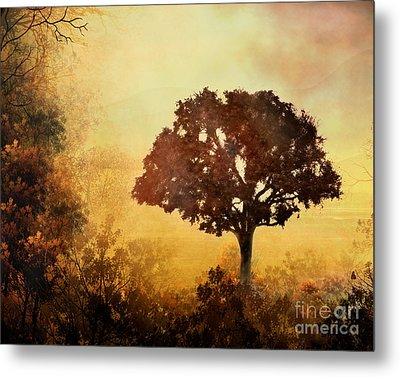 Heavenly Dawn Metal Print by Bedros Awak