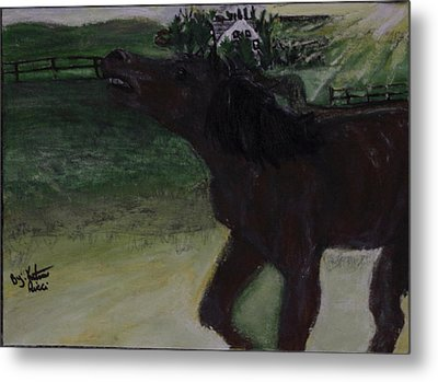Home Sweet Horse Metal Print by Katrina Ricci
