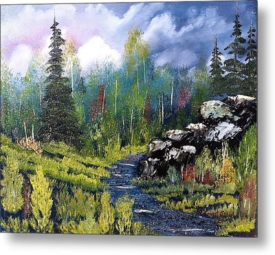 Into The Wilderness Metal Print by Roy Gould