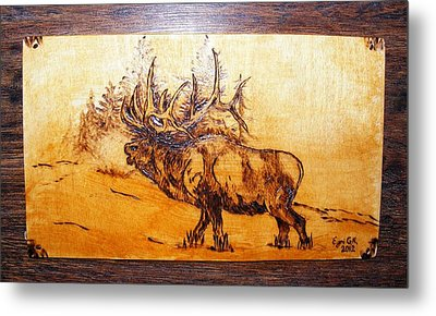 Kingof Forest-wood Pyrography Metal Print by Egri George-Christian