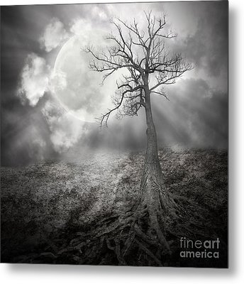 Lonely Tree With Roots Holding The Moon Metal Print by Angela Waye