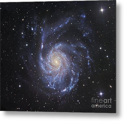 M101, The Pinwheel Galaxy In Ursa Major Metal Print by Robert Gendler