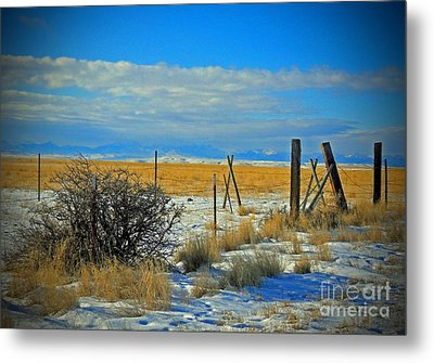 Montana Fencerow Metal Print by Desiree Paquette