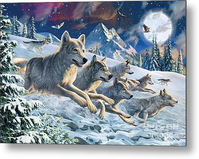 Moonlight Wolfpack Metal Print by Adrian Chesterman