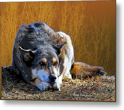 Ode To An Old Dog Metal Print by Renee Forth-Fukumoto