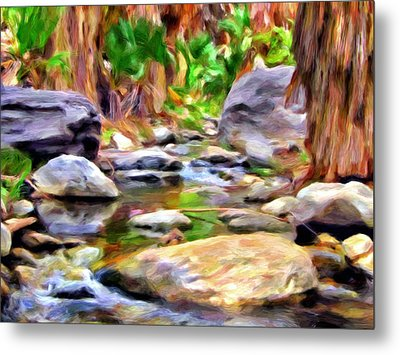 Palm Canyon Trail Metal Print by Michael Pickett