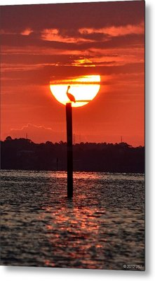 Pelican Silhouette Sunrise On Sound Metal Print by Jeff at JSJ Photography