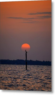 Pelican Sunrise Silhouette On Sound Metal Print by Jeff at JSJ Photography