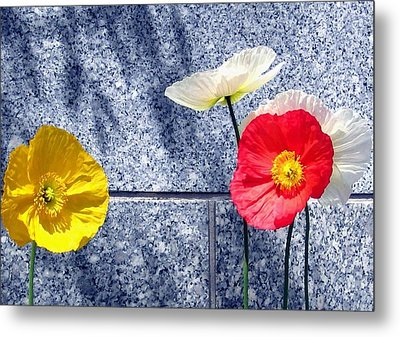 Poppies And Granite Metal Print by Will Borden