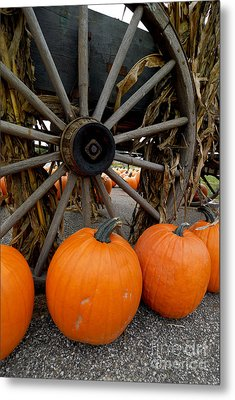 Pumpkins With Old Wagon Metal Print by Amy Cicconi