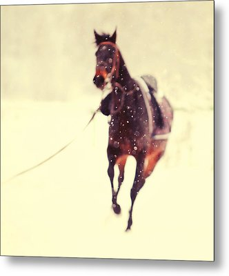 Race In The Snow Metal Print by Jenny Rainbow