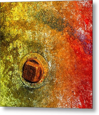 Raw 3 Metal Print by Tom Druin