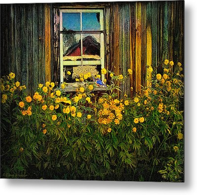 Reflections On Happiness Metal Print by Lianne Schneider