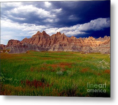 Sea Of Color Metal Print by Laurie Wilcox