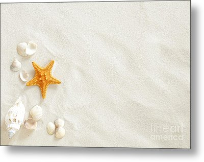 Seashells Metal Print by Boon Mee