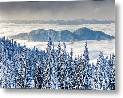Second Level Metal Print by Evgeni Dinev