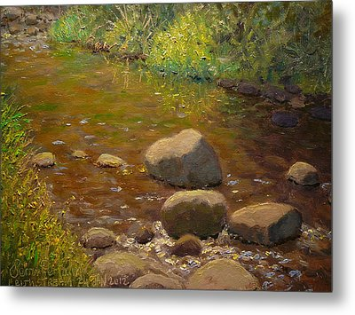 Summer Leith Stream  Metal Print by Terry Perham