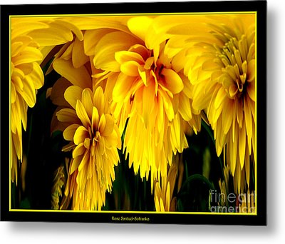 Sunflower Abstract 1 Metal Print by Rose Santuci-Sofranko