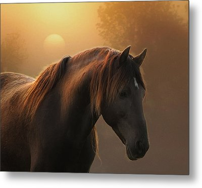 Sunrise On Planet Earth Metal Print by Ron  McGinnis
