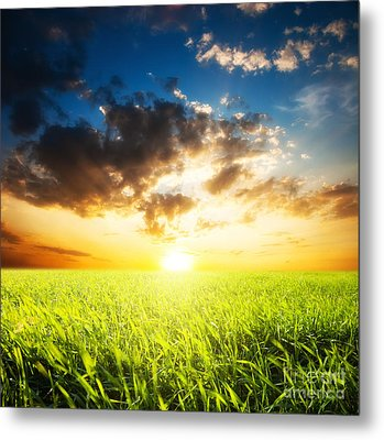 Sunset And Field Of Grass Metal Print by Boon Mee